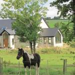 Glenview Lodge B&B,  Burnfoot