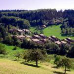 Hotel Pictures: Ferienwohnung im Terrassenpark, Sasbachwalden