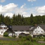 Hotel Pictures: Landhaus Zum Rothaarsteig, Erndtebrück