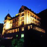 Hotel Edelweiss, Engelberg
