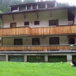 Foto Hotel: The Treehouse Backpacker Hotel, Grünau im Almtal