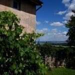 Hotel Pictures: Le Grand Noë, Roisey