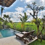 Bali Ubud Private Villa, Ubud