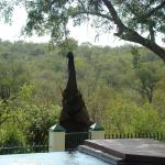 Muweti Bush Lodge, Grietjie Game Reserve