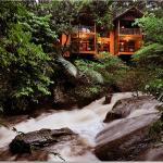 Vythiri Resort,  Vythiri