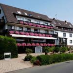 Hotel Pictures: BELVEDERE - das BIO HOTEL Garni & SuiteHotel am Edersee, Waldeck