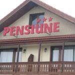 Pensiunea Casina, Sălişte