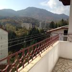 酒店图片: Katya Guest House, 斯莫梁