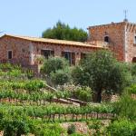 Hotel Pictures: Es Castell, Portocolom
