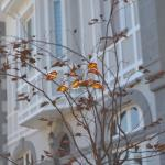 Hotel Pictures: Alamar Salinas House, Salinas