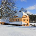 Hotel Pictures: Pension Pod Lipou, Loučovice