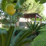 Villa Alfano, Pozzallo