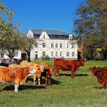 Hotel Pictures: Spree Chalet, Lübbenau