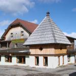 Hotelbilleder: Gasthof Rieseralm, Katschwald