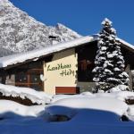ホテル写真: Landhaus Hedy, ハイターヴァング