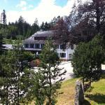 Hotel Pictures: Hotel Sarbacher, Gernsbach