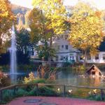Parkhotel Am Schwanenteich, Bad Sooden-Allendorf