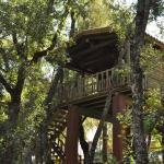 Hotel Pictures: Los Nidos De Santa Maria, Arroyo Frio