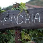 Hotel Pictures: A Mandria, Corte