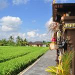 Three Dewi's Guest House, Ubud