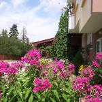 Hotel Pictures: Guest House Zodiac, Samokov