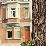 Hotellbilder: B&B Dendernachten, Dendermonde