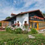 Hotel Pictures: Ferienwohnung beim Goldbachl-Peppi, Hohenau
