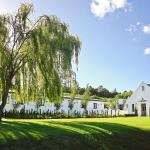 Brenaissance Wine & Stud Estate, Stellenbosch