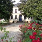 Hotel Pictures: Château des Grandes Vignes, Preignac