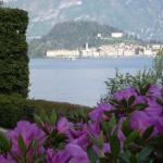 Charming Glicine and Azalea House Art and Colour with lakeview, Griante Cadenabbia