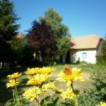 Vadvirágos Pihenőhely, Mórahalom