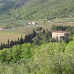 Il Maggese, Cortona