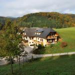 Hotel Pictures: Gasthaus - Gästehaus Schusterbauer, Rein
