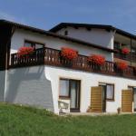 Hotel Pictures: Hotel Alpenblick Berghof, Halblech