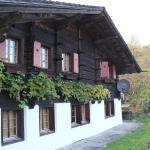 Hotel Pictures: Chalet Bergwelt, Frutigen
