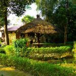 Nature Safari Lodge, Bhurkīā