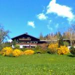 Hotelfoto's: Biohof Schwanser, Steinbach am Attersee