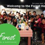 The Forest Hostel,  Jeju