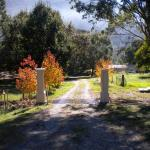 Hotellikuvia: Hillview Oak B&B, Lankeys Creek
