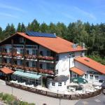Hotel Pictures: Waldhotel Hubertus, Eisfeld