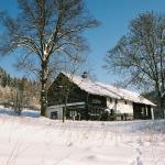 Hotel Pictures: Cykloturistická Základna Lesovna, Těchonín