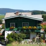 Hotellikuvia: Haus Auer, Hof bei Salzburg