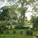 Nilketha Villa Eco Hotel, Anuradhapura