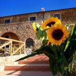 Antico Borgo Casalappi,  Campiglia Marittima