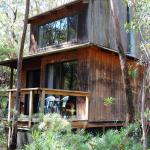 ホテル写真: Jemby Rinjah EcoLodge, Blackheath
