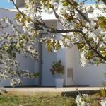 Il Giardino dei Ciliegi - Turi, Turi