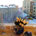 Koskikatu Apartment,  Rovaniemi