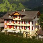 Hotel Des Alpes,  Kandersteg
