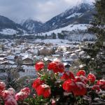 Hotelbilleder: Landhaus Alpina, Mittersill