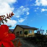 Yakushima Cottage Morino Fairy, Yakushima